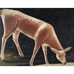 Niko Pirosmani - Roe Deer