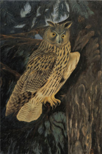 Adolf Dietrich - Owl in the forest